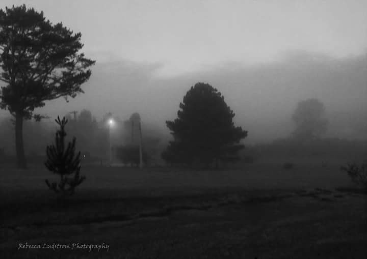 Tonight in the hinterland of Coffs Harbour NSW Australia at 5pm quite an early onset of fog for here
