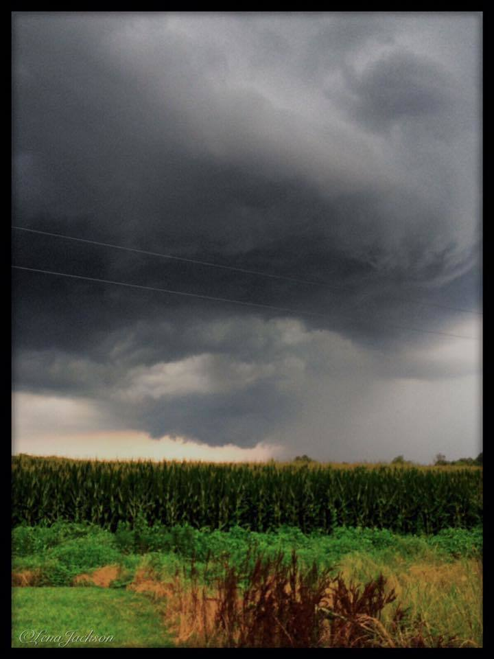 7-4-2016 a gorgeous little thunderstorm passing through the field in the back yard, a lot of thunder and lightning, Autryville NC