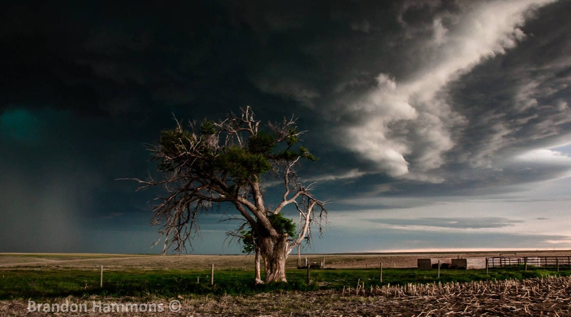Like a fighter who continues to get back up, this weather beaten tree stands stoically in the presence of a looming supercell in rural northeastern Colorado (5/26/17)