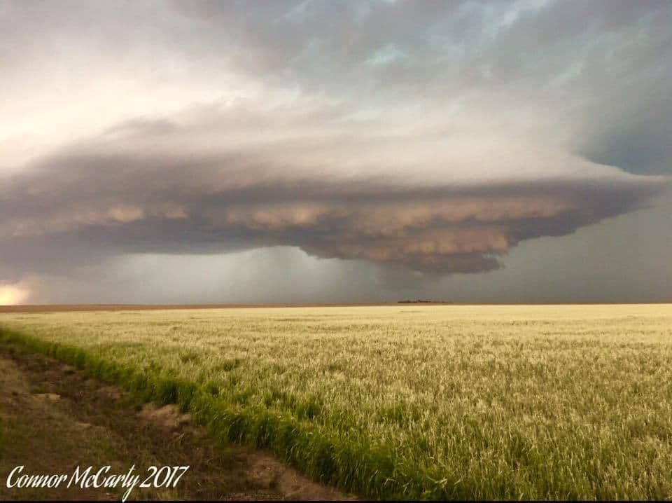 Absolutely insanely structured supercell yesterday evening near Goodland, Kansas. This thing fired up on the boundary and was stationary for hours.