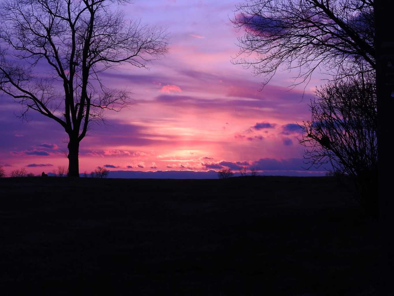 Stunning Sunset this evening. (NIKON P900)