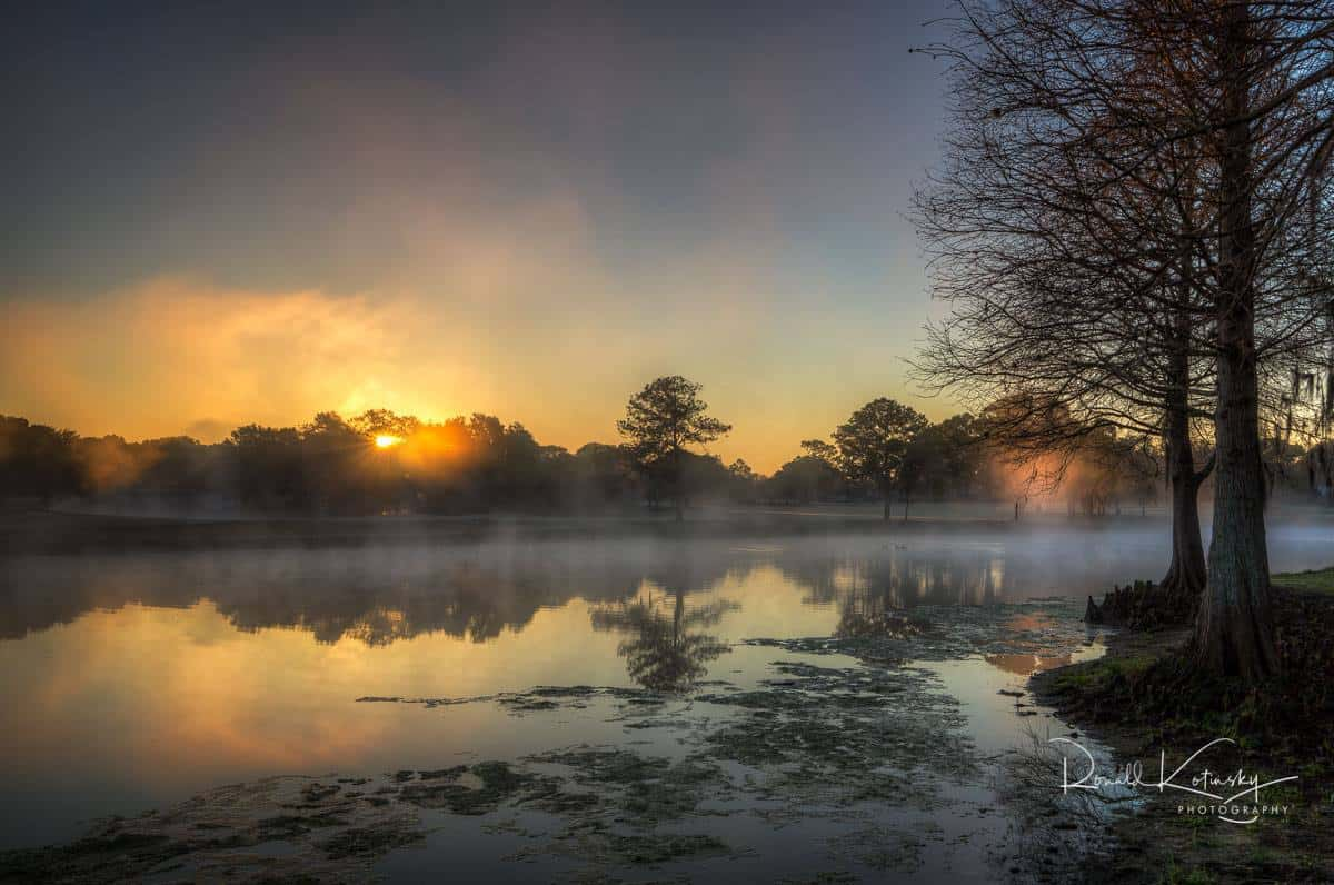 Fogs of the Morning Light - Valrico - Florida -