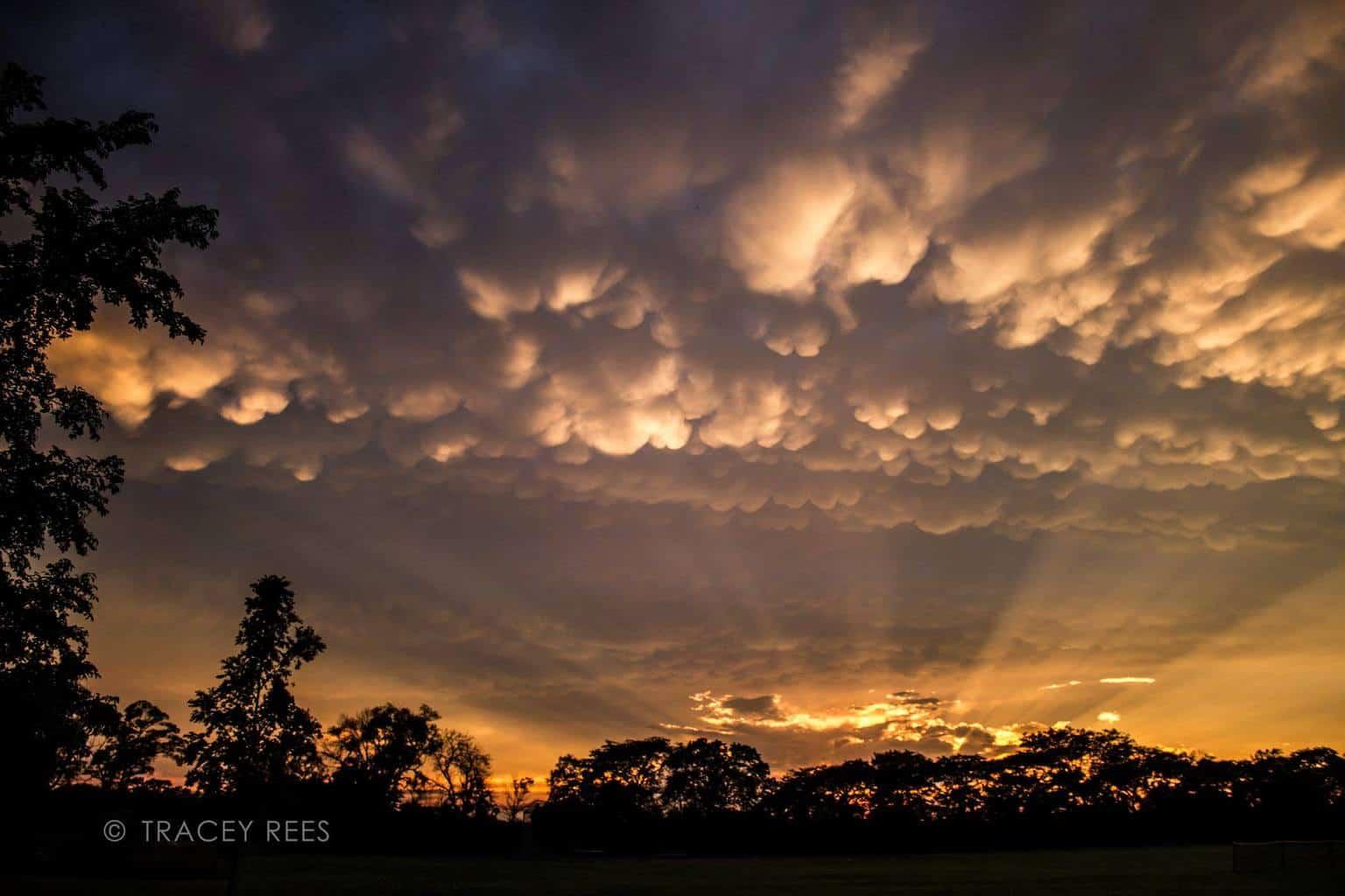 Mammatus sunset. Warrenville, IL
