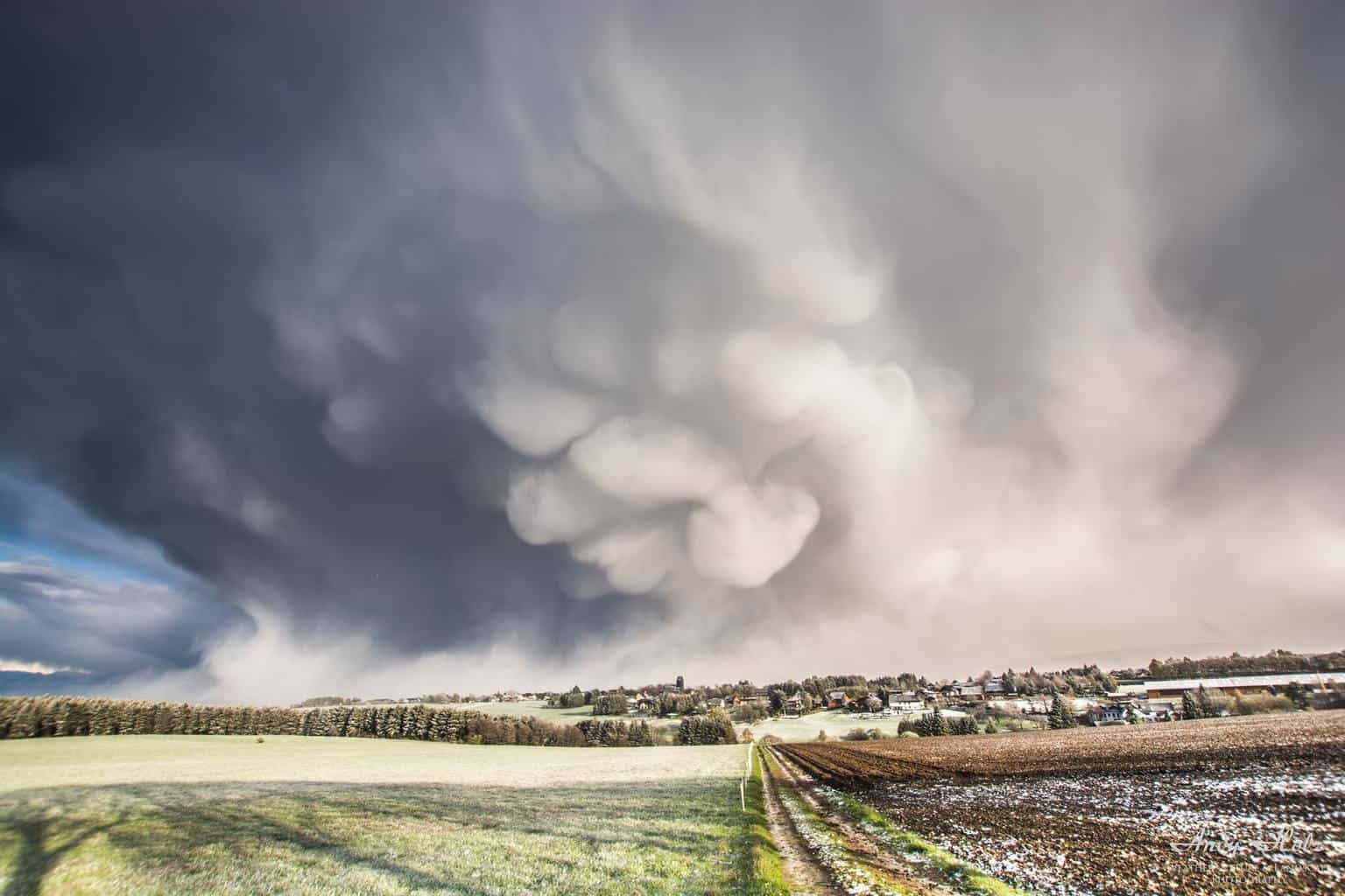 Backside of a snow thunderstorm with huge mammatus. About two years ago at home in Huertgenwald/Germany