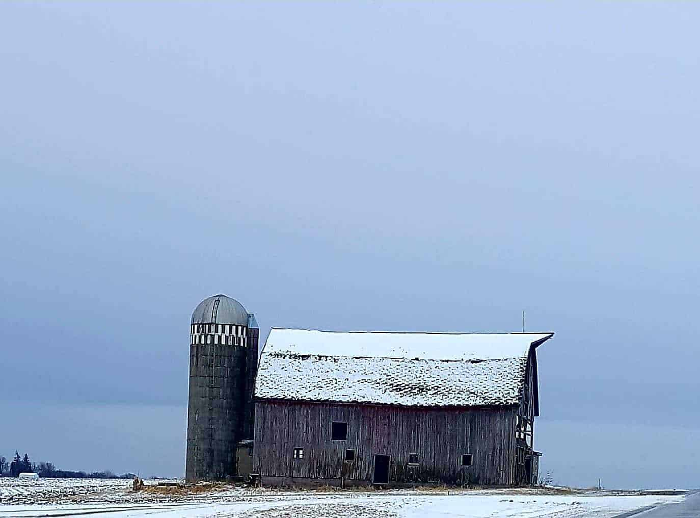 The old barn survived another early spring snow storm today outside Lansing Minnesota