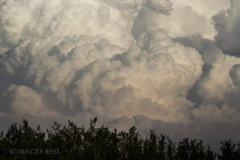 Giant and gorgeous cumulonimbus clouds - can't wait to see these beauties again!