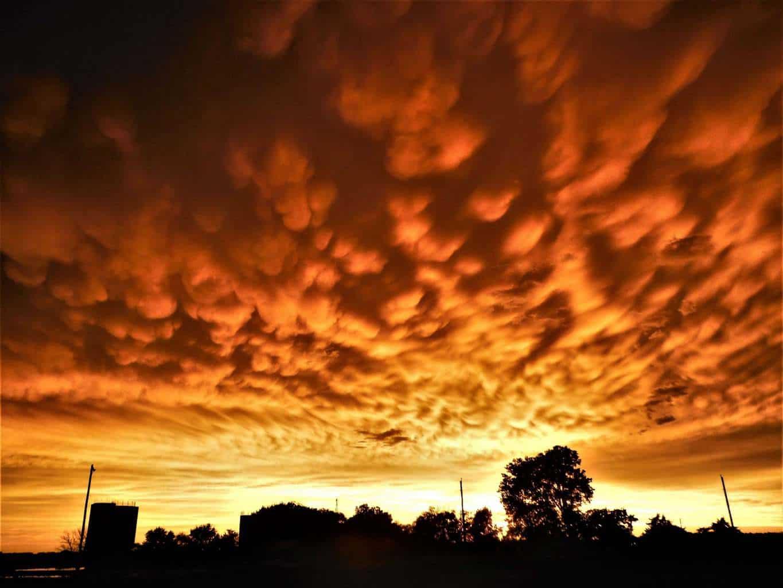 The sun transforms Mammatus clouds to gold. Dickinson Co. Kansas.