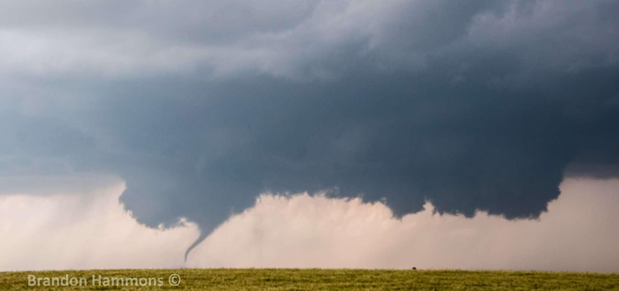 A Kansas sidewinder. West of Minneola, KS (5/24/16)