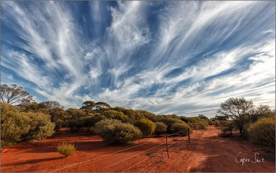 Cirrus clouds - Perenjori, Western Australia