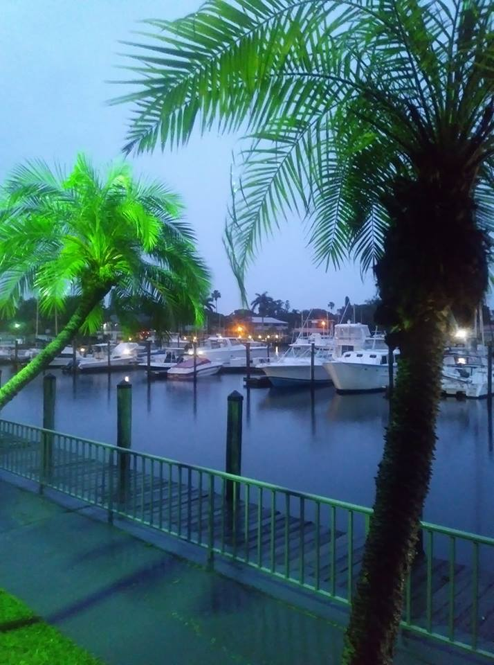 Beautiful Day Night in Sarasota FL after all the storms!