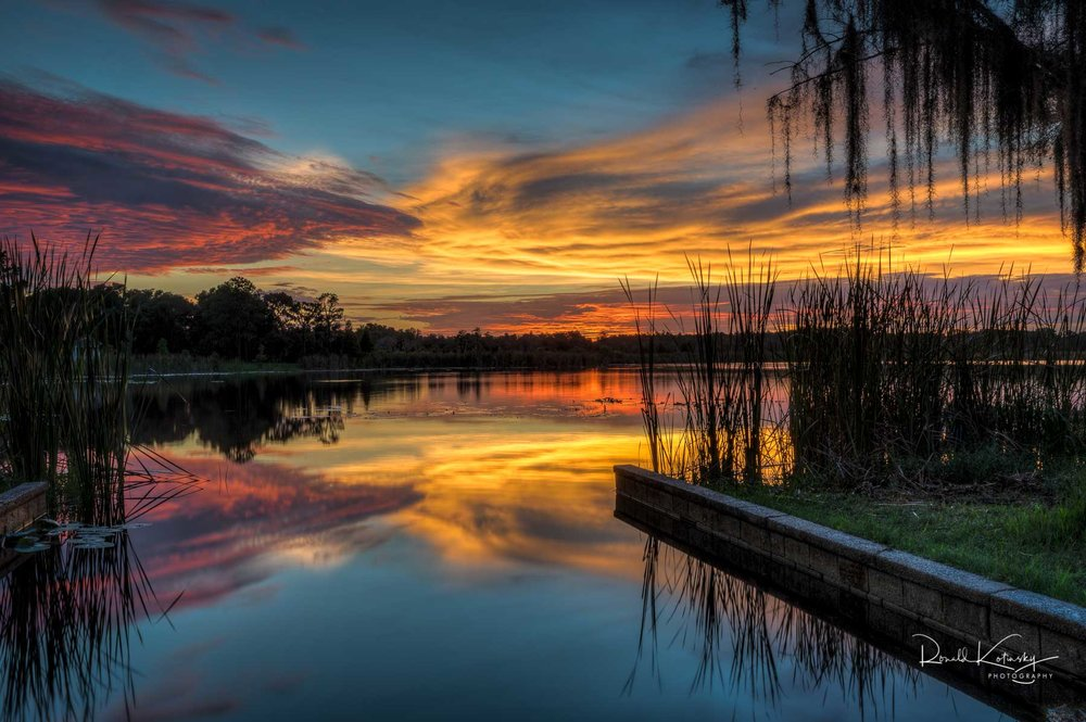 Lutz - Florida - June 2018 - my best twilight of the year with red,orange,blue,yellow and golden hues all in one frame.  rkotinsky.com  for more — in  Lutz, Florida .