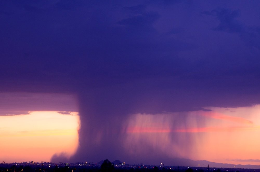 A down burst over the Phoenix zoo.