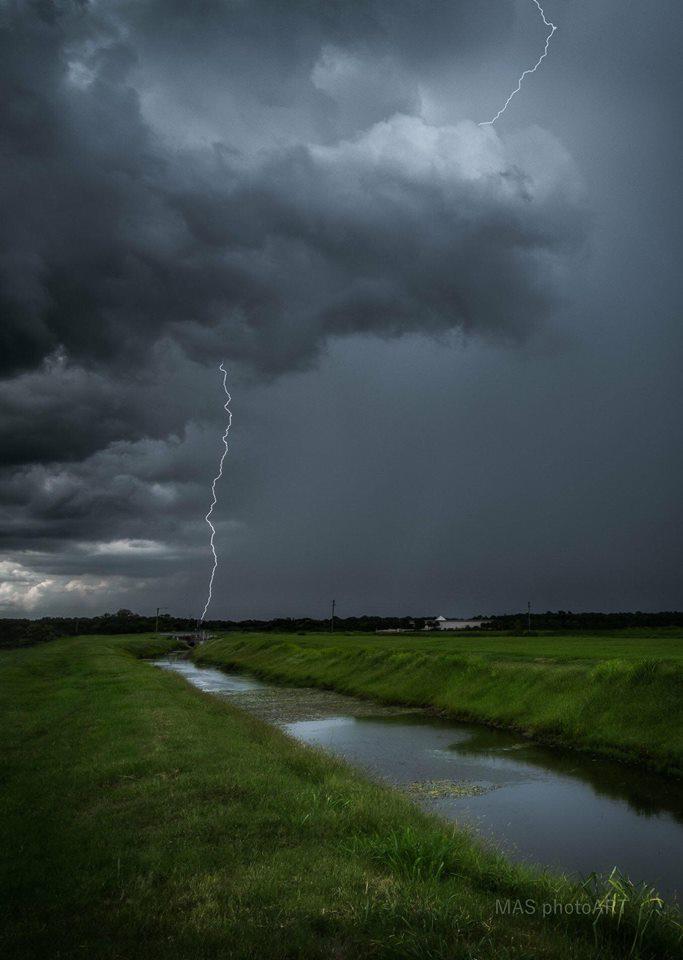 An afternoon bolt captured in Sarasota, FL