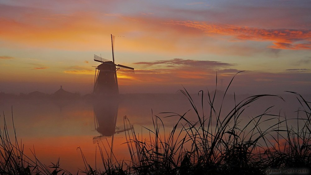 A beautiful sunrise... Netherlands , somewhere in 2017 on a foggy morning.