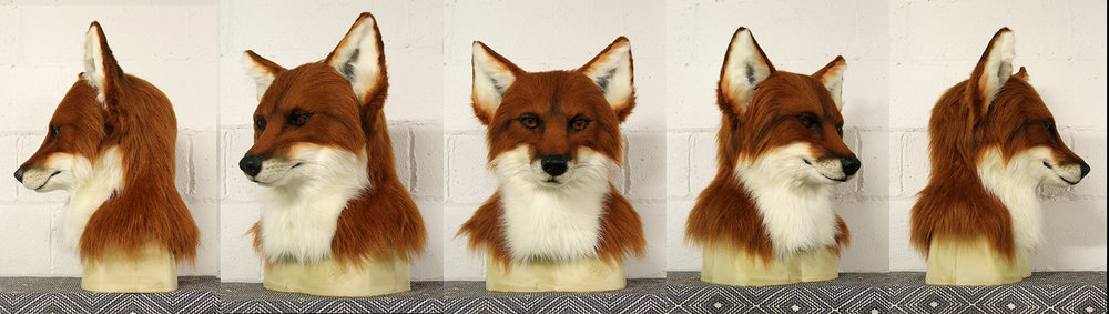"""Charlie"" Red Fox"