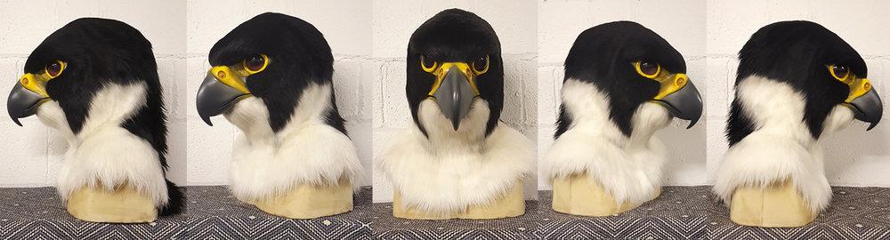 """""""PORTER"""" Peregrine Falcon"""