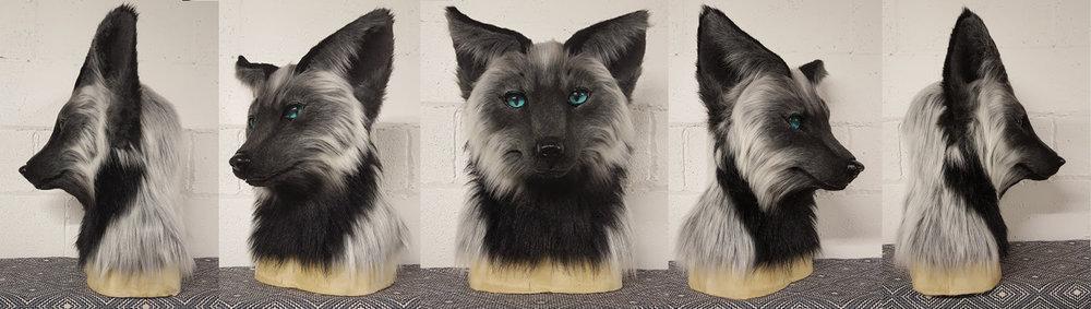 """""""JULEP"""" Silver Fox"""