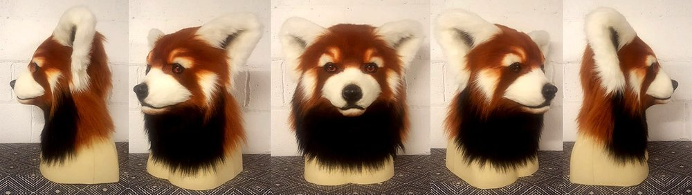 """SEQUOIA"" Red Panda"