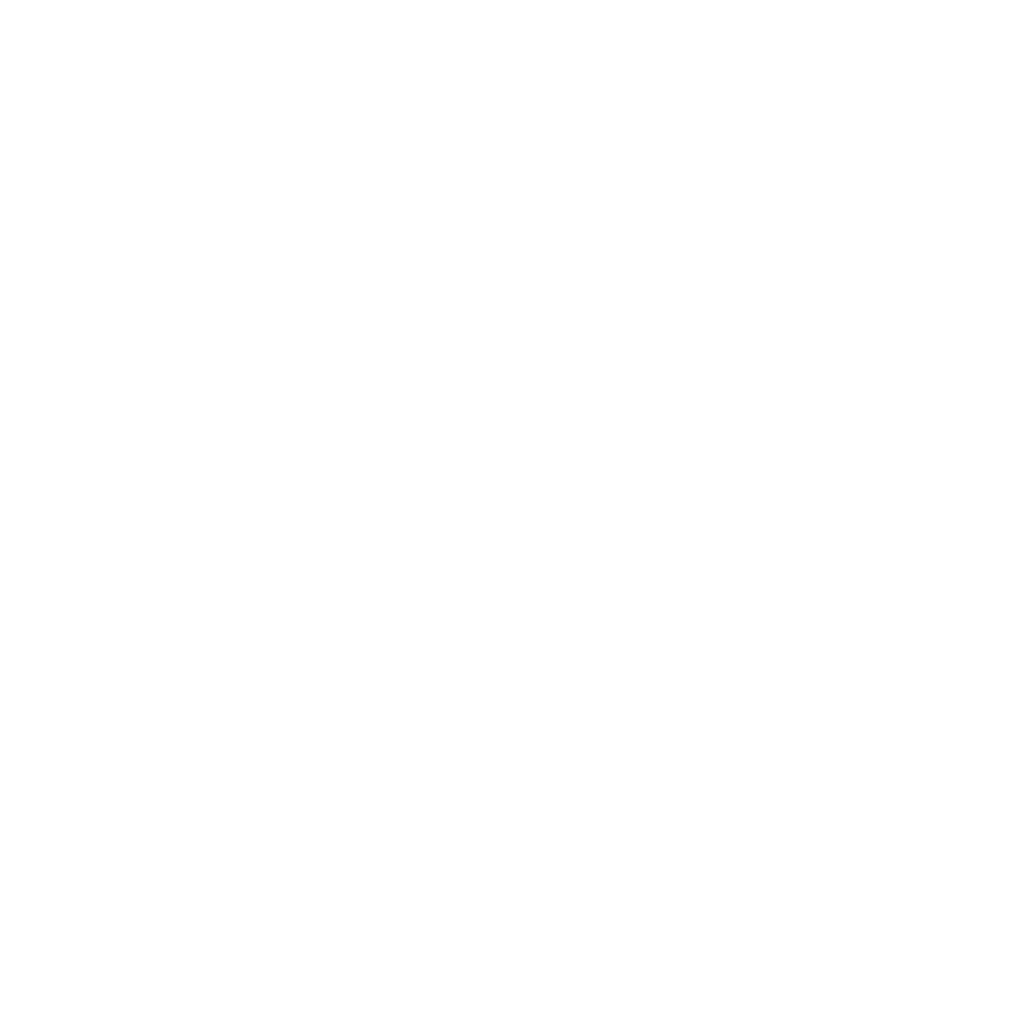 The Flying Nest