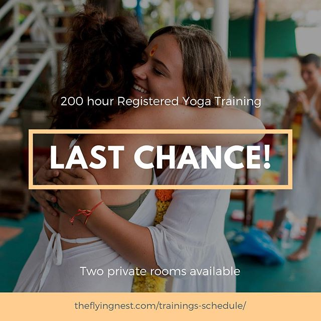 The 200 RYT is starting this weekend! There are only TWO private rooms available (shared rooms sold out). If you've been considering becoming a yoga teacher or want to learn more and deepen your personal practice we would love to have you! Send me a dm or email to learn more or visit theflyingnest.com to register