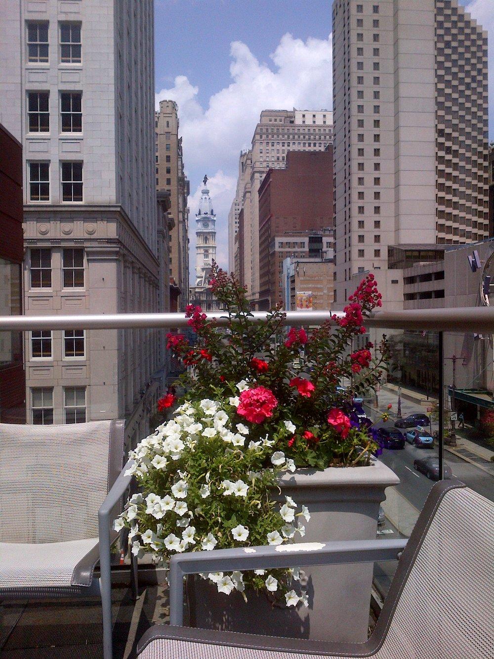 summer city rooftop.jpg