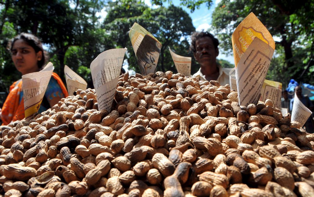Los cacahuetes o maní son una buena fuente de ácidos grasos omega. Foto: Jagadees