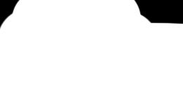 Mandeville-Logo-White.png