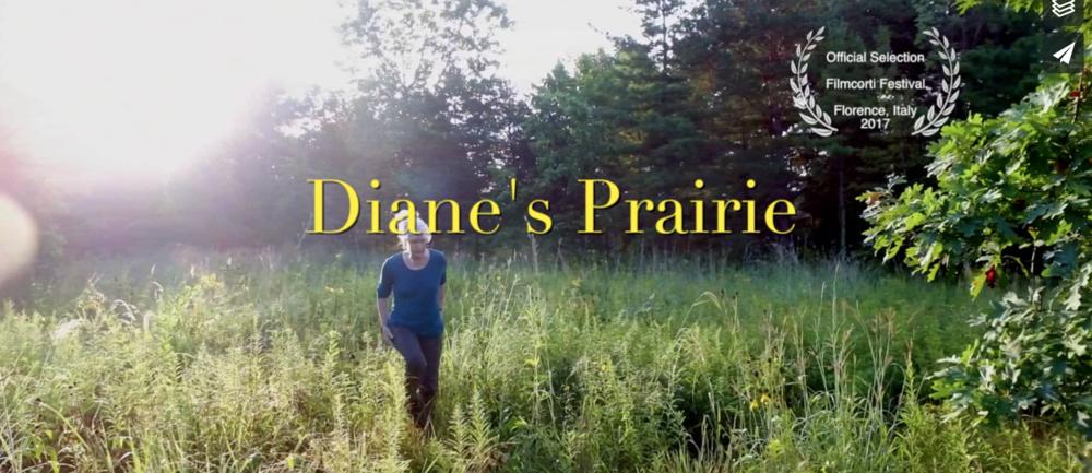 DIANE'S PRAIRIE -
