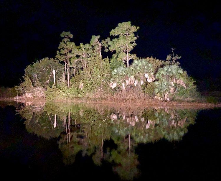 First Rains and Last Love-Bugs: Florida's Seasonal