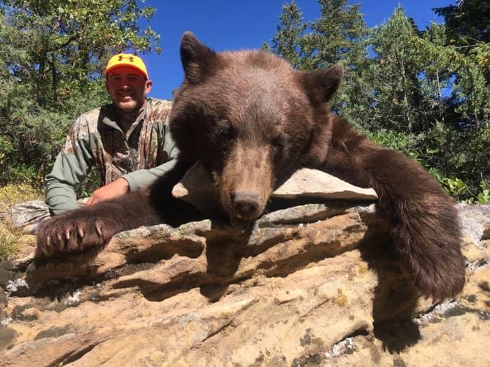 Matt Lea Bear.jpg