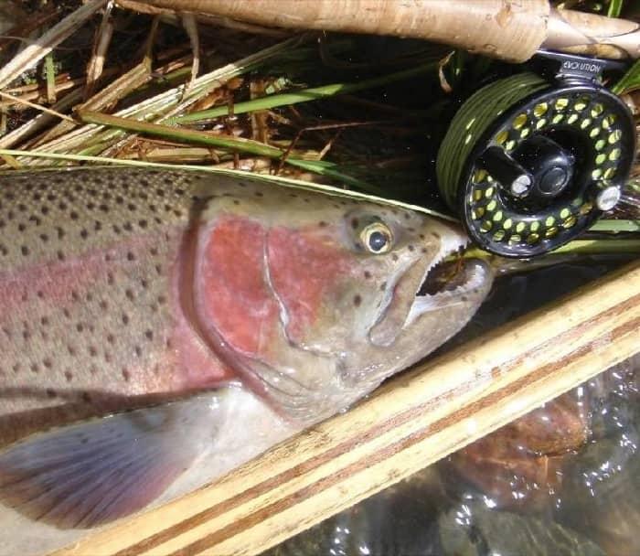 fishing-06.jpg