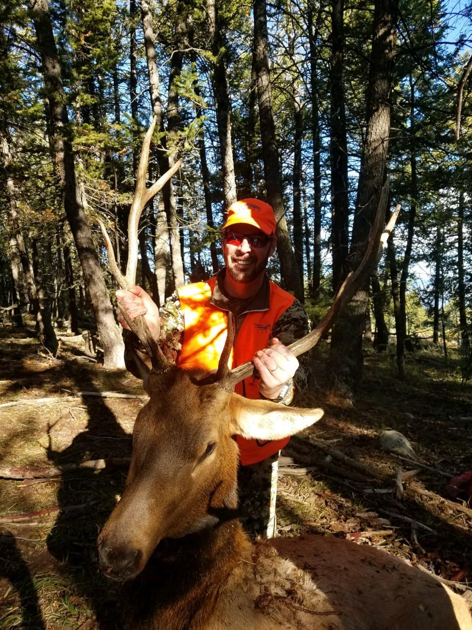 Todd Welty bull basin bull elk.jpg