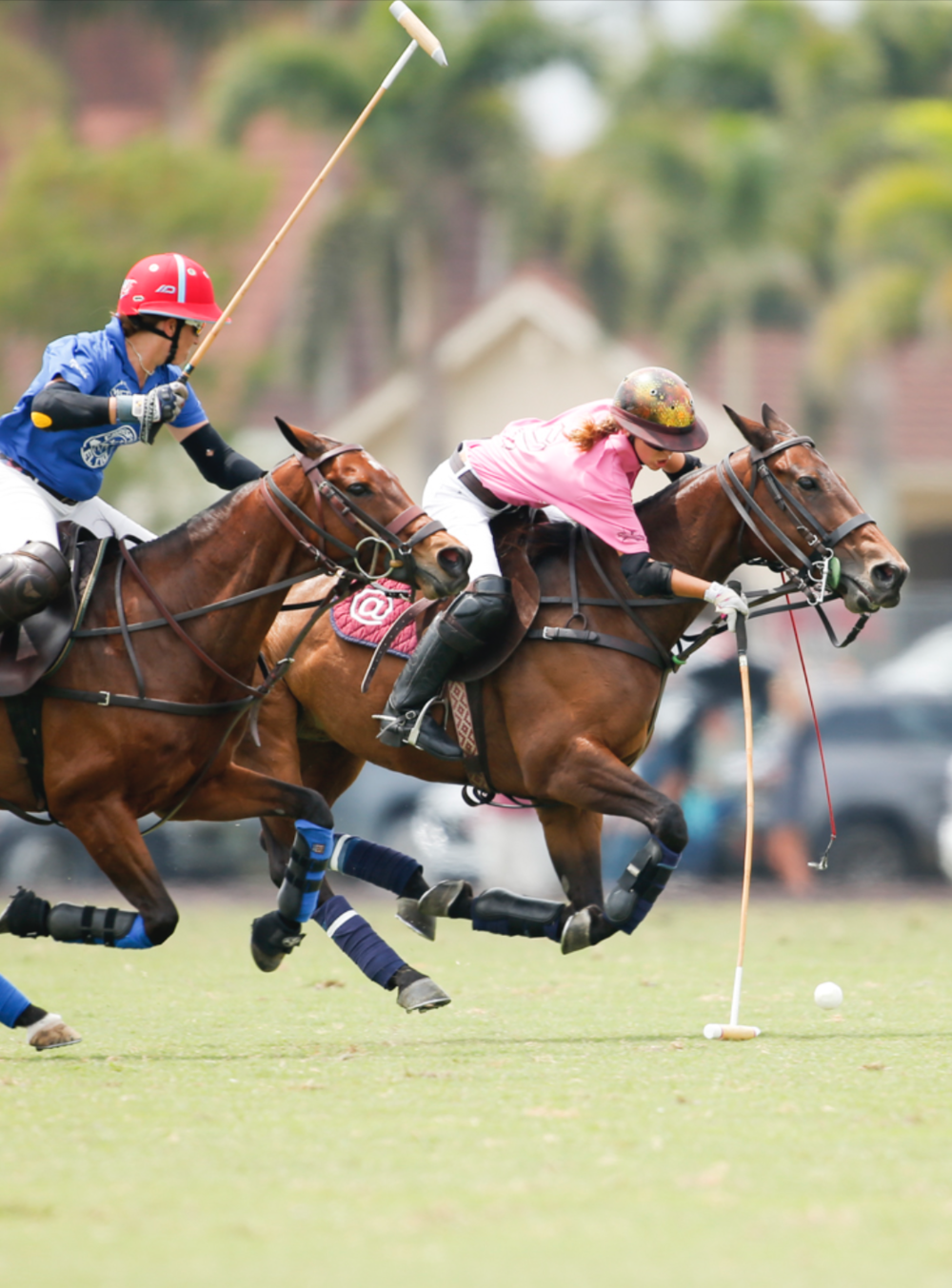 Built from the ground up - Created by the polo community itself, start-up funding comes from individual players and polo supporters. Once launched (Q4 2018), in-site advertising sales and sponsorship will support the network's ongoing maintenance and administration.- $40,000 start-up funds exclusively cover the hard costs of developing  WIPN's virtual headquarters – a website where players, umpires, and club administrators can create and publish their own content as well as connect with each other through a player search/sort and tournament calendar. WIPN is managed by an elected volunteer board.- Sustained by in-site advertising sales and sponsorships- Access is free or low-cost to any female player worldwide with a verifiable club affiliationSupport WIPN.   Give $25, $150, $5000 – for yourself and on behalf of a polo sister you've never met. It all helps us build a better polo community.