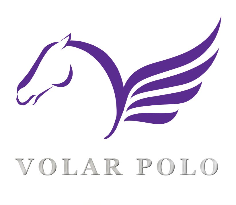 Volar Logo.png