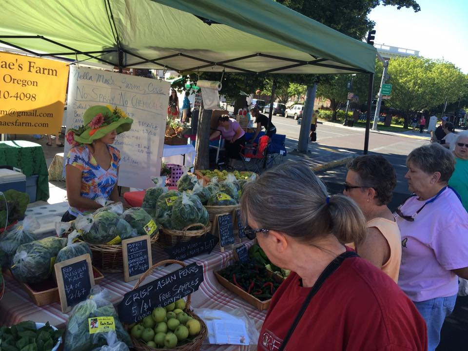 Farmer's Market - Every dollar we spend has that power to influence our community.  The Local Multiplier Effect is the economic term used to describe how many times a dollar recirculates within the local economy before leaving.  The beauty of this system is that we all have the power to improve our local economy because each new round a dollar makes has the same impact as a new dollar coming into the community.