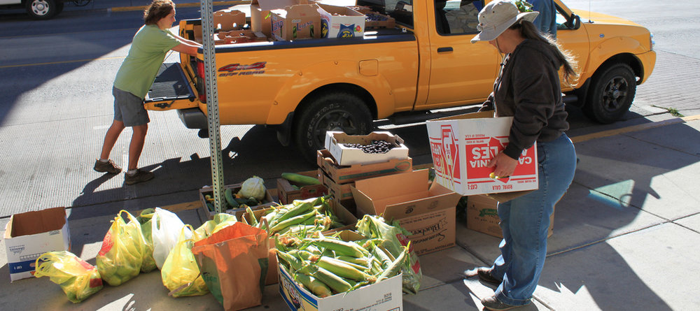 food security.jpg