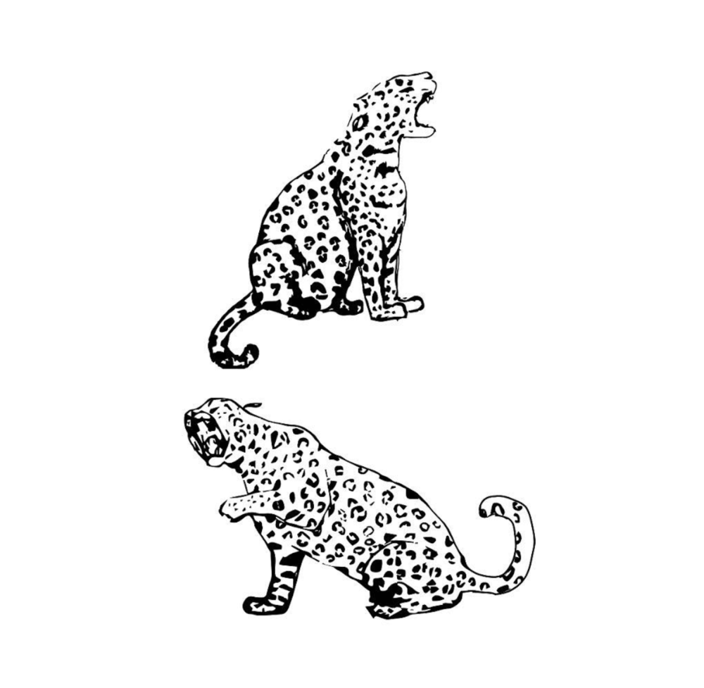 Jaguars hand-drawn and digitalized for a future print design