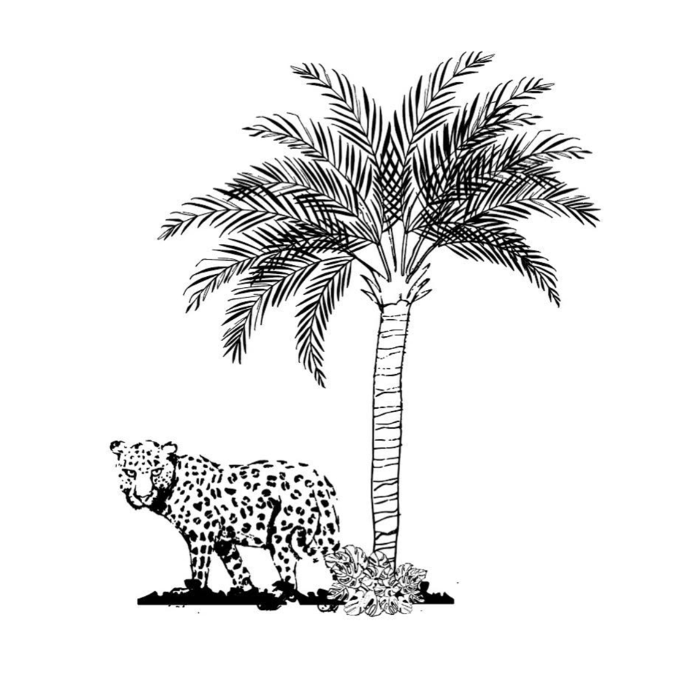 Jaguar and palm tree for a future print design