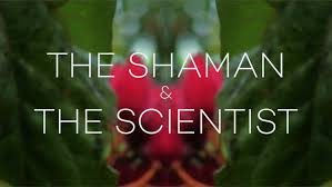 the shaman and the scientist.jpg