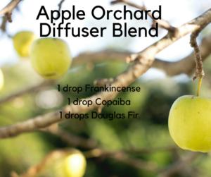Apple-OrchardDiffuser-Blend-300x251.png