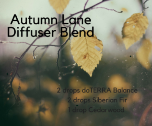 Autumn-LaneDiffuser-Blend-300x249.png