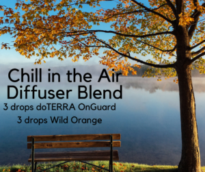 Chill-in-the-AirDiffuser-Blend-300x251.png