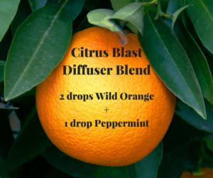 Citrus-Blast-Diffuser-Blend-2-300x251.png