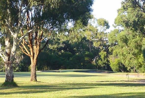 Golf 6 2.jpg