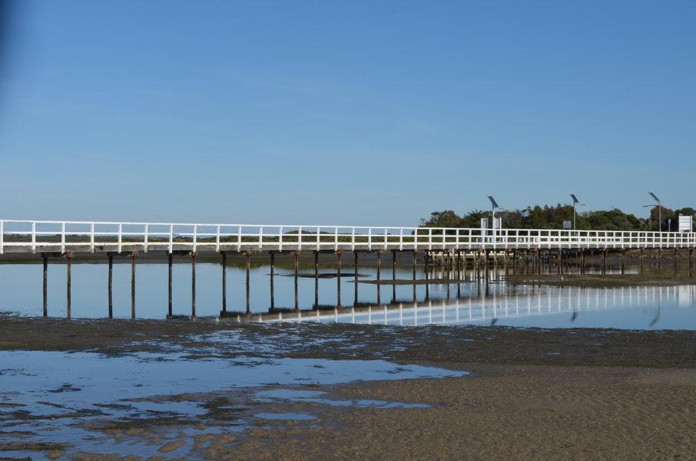 McLaughlin jetty 3.jpg