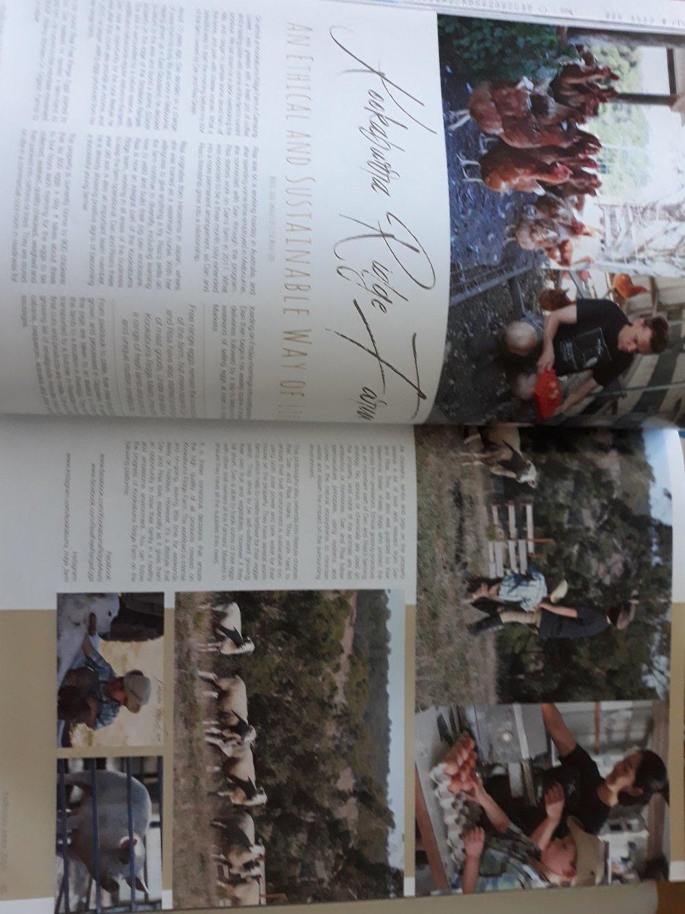 Gippsland Lifestyle Mag 1.jpg