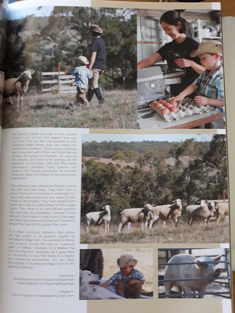 Gippsland Lifestyle Mag 3.jpg
