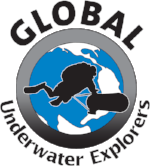 Official-GUE-Logo-2016.png