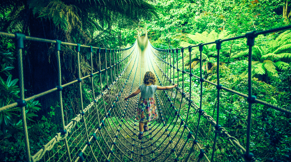 Heligan_Rope_Bridge.jpg