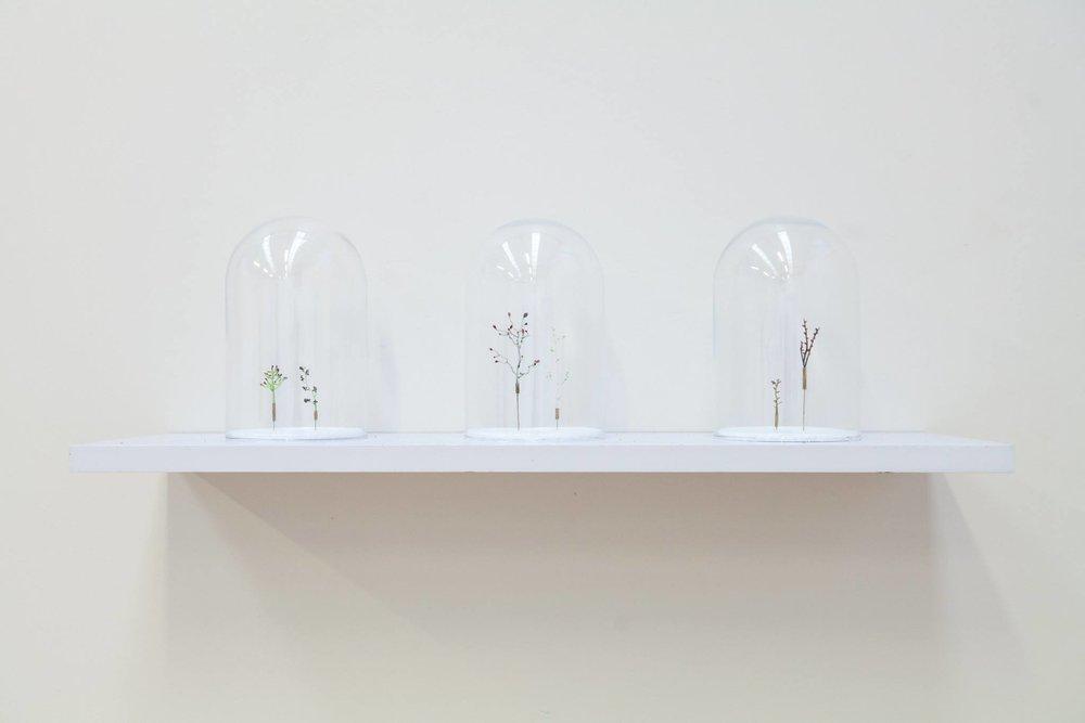 Introspective - Samantha DennisImage: Floral Specimens (2016), Mixed Media, Sizes Varied